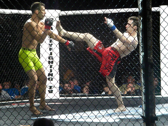 A perfect kick during a bantamweight MMA fight